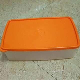 Tupperware Large Box