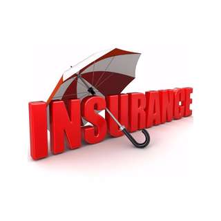Motor / Commercial / Maid / Pet / Pilot / All risks Insurance