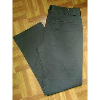 GIORDANO KHAKI Skinny Fit Pants