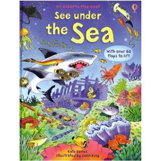 Usborne Hard Cover book*See Under the Sea*Educational book*Children book*Birthday gift*Pre school toy*