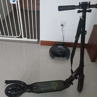 Kick Scooter Adult