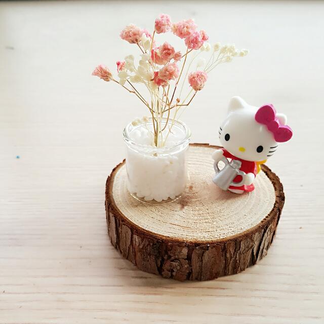 限時免運)全新手作原創迷你乾燥花+Kitty#蛋黃哥或、龍貓、貓貓+木片