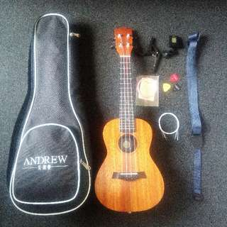 ukulele with bag and lots of accessories