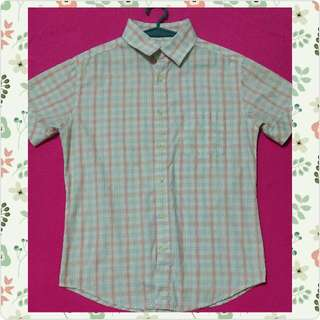 Pastel Polo for Him(checkered)