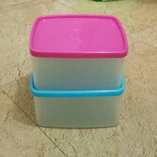 Tupperware Medium Box