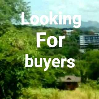 Lot For Sale In Nueva Ecija,tarlac, Luzon And More