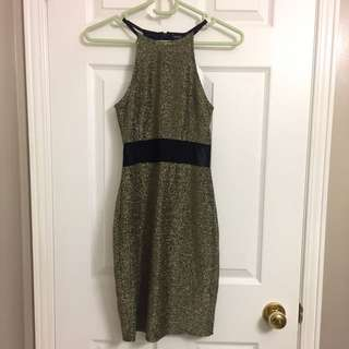 F21 Metallic Dress