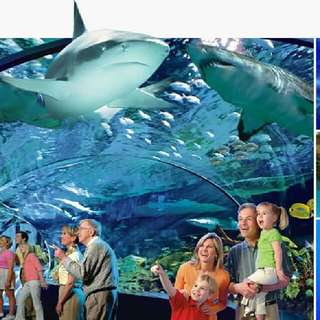Ripleys Aquarium Tickets