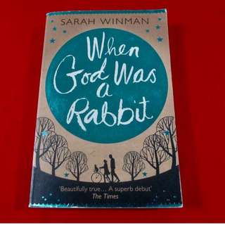 When God Was A Rabbit by Sarah Winman (Trade Paperback)