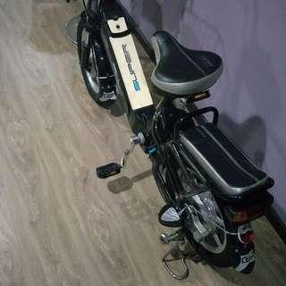 Electronic Bike