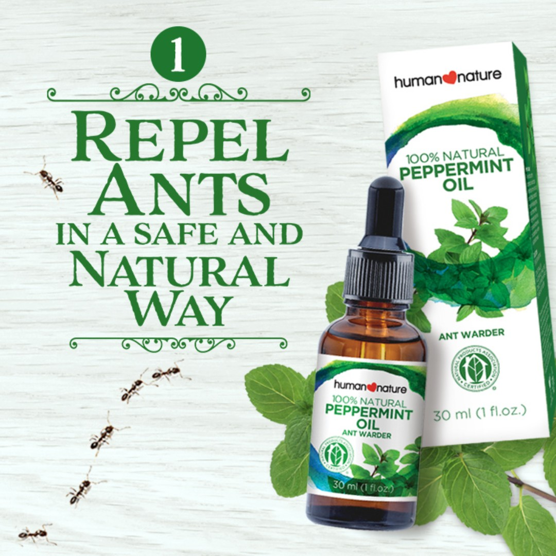 Peppermint Oil Ant Warder