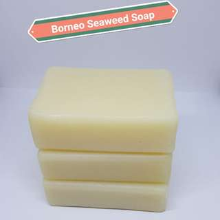AMALIA Borneo Seaweed Skin-Firming Soap