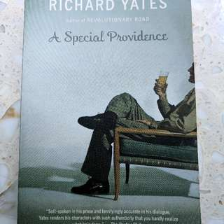 Literature Book - A Special Providence By Richard Yates