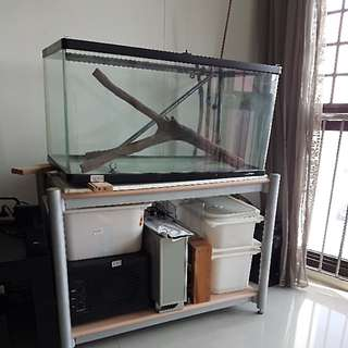 Fishtank Fish Tank