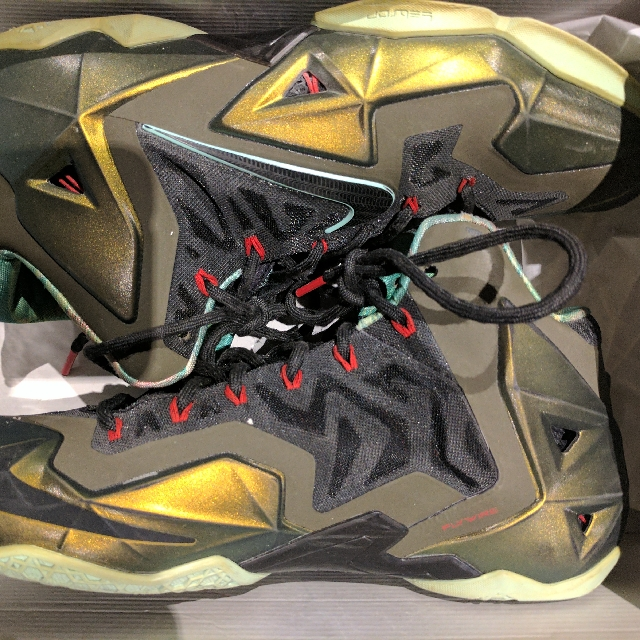 LeBron 11 Kings Pride US10.5 $130