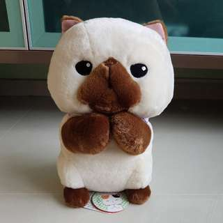 Amuse Begging Munchkin Siamese Cat Plush