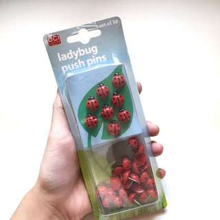 Ladybugs🐞Pin