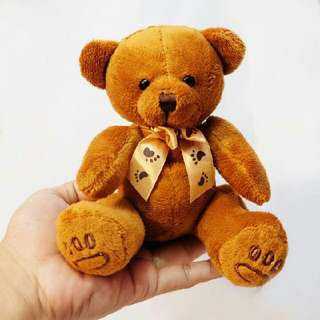 Teddy Bear Mini