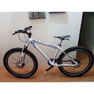 Mountain Bike Infinity Roadglide 26er