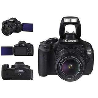 Canon 600D Body + Lenses > 55-250 Canon + 50mm 1.8 + Canon 18-55