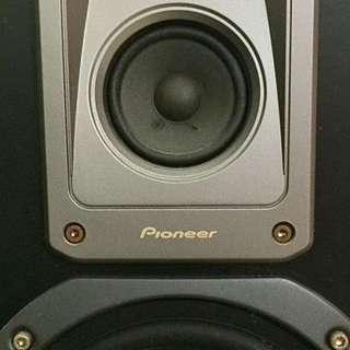 Pioneer Standing Speakers