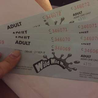 4 adults ticket to wild wild wet valid from 28 Aug to 27 Sept 2017