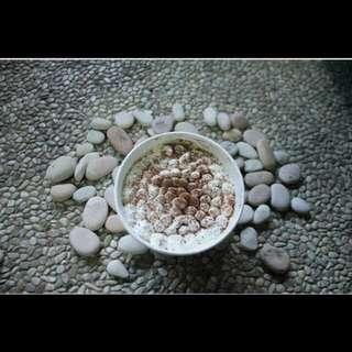 Milkbath Cake /Tres Letchess