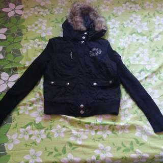 Jacket Fashion (Small)