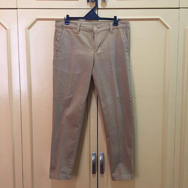 Human Brown Pants