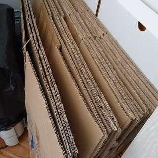 二手紙箱12個(新淨),免費。
