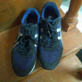 Original Onitsuka Tiger Shoes (Repriced!!!)