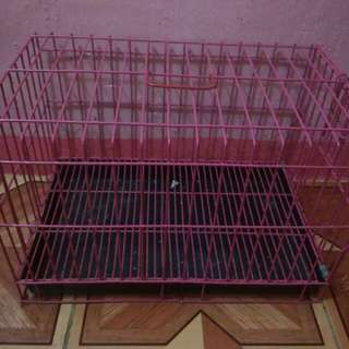 Cage, Travel bag, Clothes For Only P800