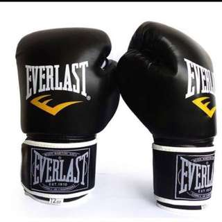 Everlast Boxing Gloves Original CLEAR STOCK Sales