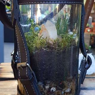 Leather and glass crystal terrarium