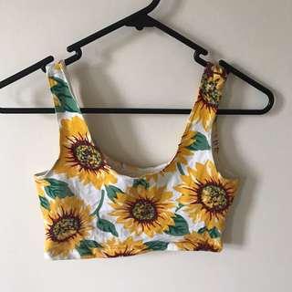 Sunflower crop