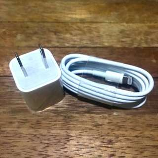 Apple iPhone Lightning USB Cable Charger
