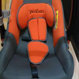 Car Seat/carrier