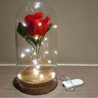 Diy Enchanted Rose Lighting
