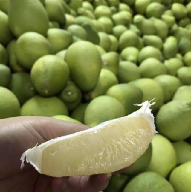 正宗百年老欉麻豆文旦 白柚