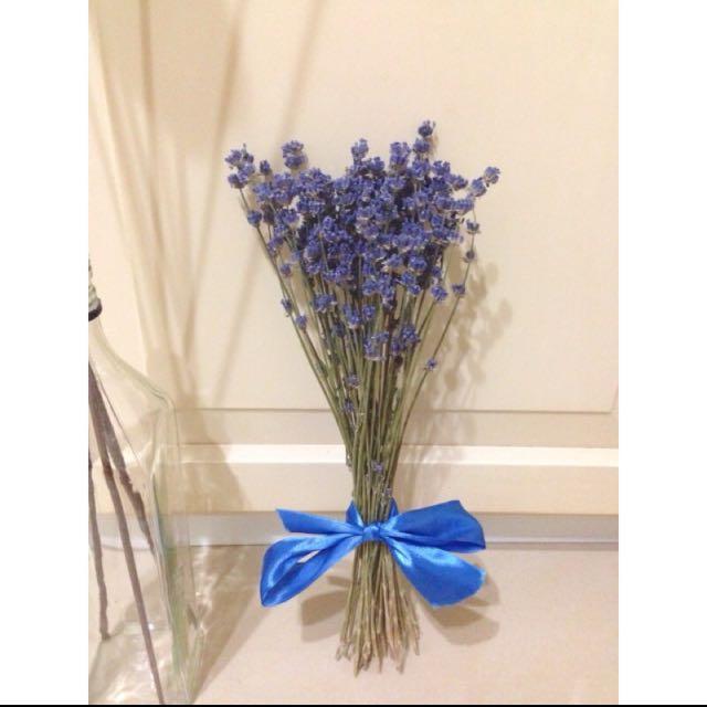 天然乾燥花法國藍薰衣草 | 法國藍 薰衣草 乾燥花 花束 婚禮佈置 居家裝飾 手作 Zakka 聖誕禮物