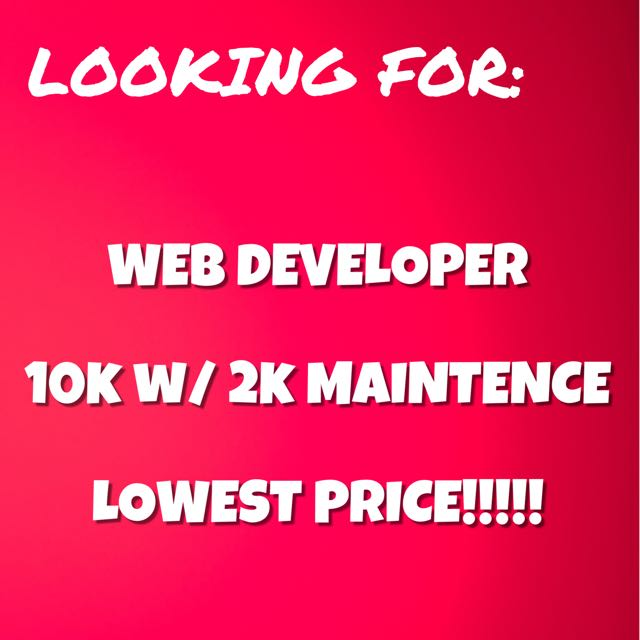 WEBSITE DEVELOPER
