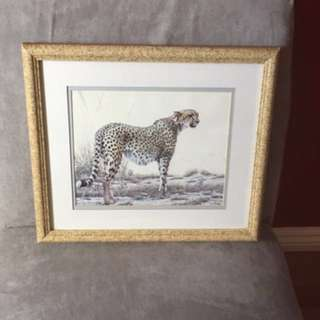 Framed Cheetah Picture
