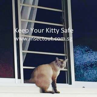 Magnetic Window Mesh - Cat Safety