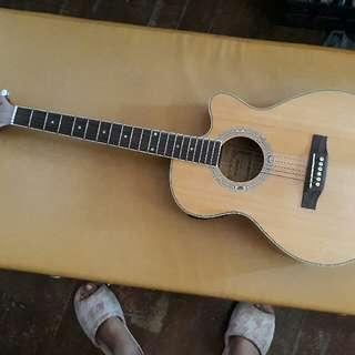 Fernando Guitar with Built-In Tuner