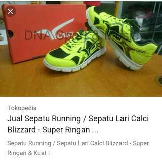 Sepatu Running Calci