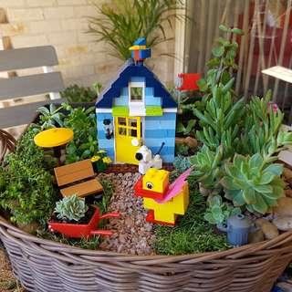 Miniature  Lego Succulents Garden