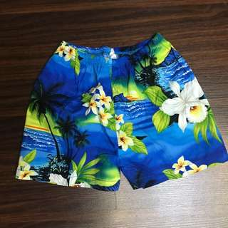 Hawaiian Polo and Shorts