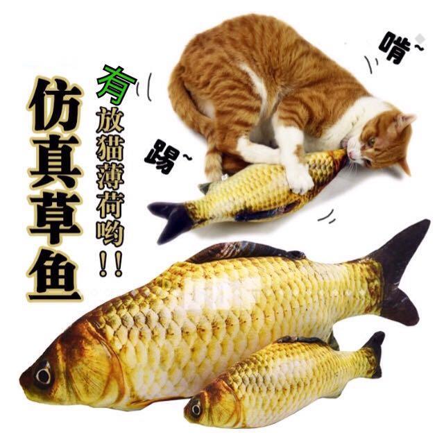 貓草魚貓玩具🐟貓薄荷抱枕 擬真鯉魚草魚 仿真鯉魚靠枕 秋刀魚