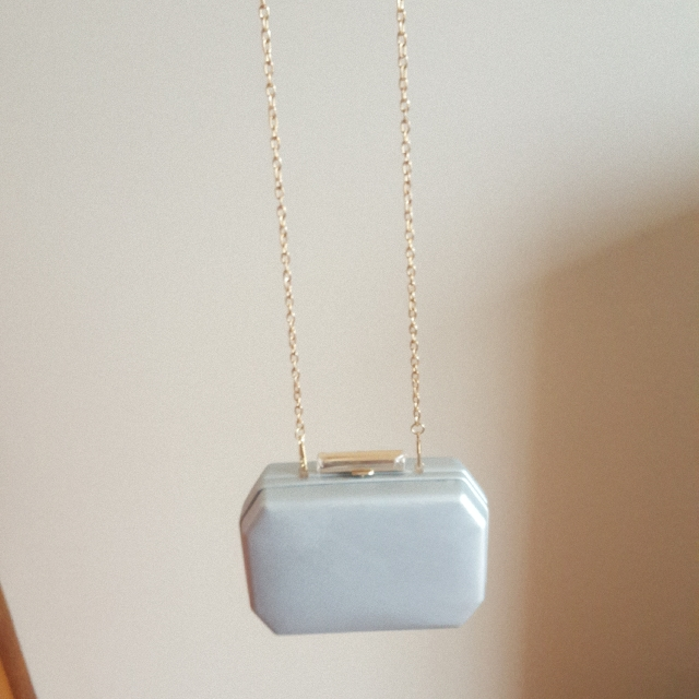 Sliver Clutch/ Shoulder Bag
