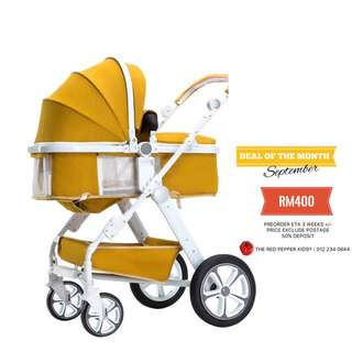 SEPT PROMO - TWO WAY BABY STROLLER